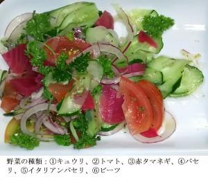 朝食のサラダの例