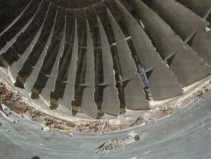 鳥衝突によるファンブレードの損傷