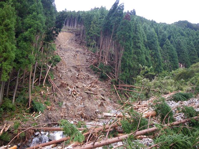 山林の崩壊